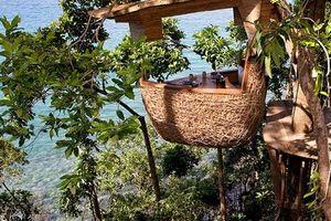 Đến Thái Lan tận hưởng cảm giác mới lạ độc đáo tại nhà hàng 'tổ chim'