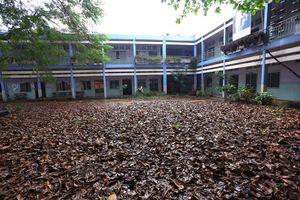 Ngôi trường 2 tầng hoang tàn sau gần 3 năm đóng cửa ở Sài Gòn