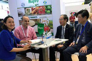 Hapro sau cổ phần hóa: Đẩy mạnh xúc tiến thương mại mở rộng thị trường xuất khẩu