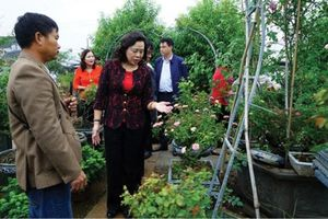 Hà Nội đầu tư 26.804,4 tỉ đồng xây dựng nông thôn mới