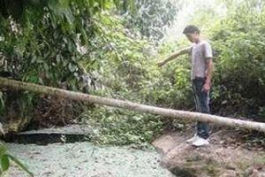 Chuyện kỳ bí ma mị về 'hang nuốt người' ở Lào Cai