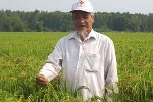 Quảng Nam: Xã Điện Tiến quyết giữ danh hiệu và tăng thu nhập