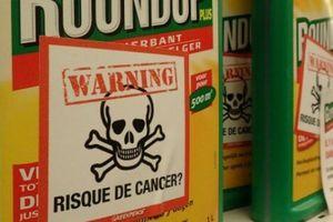 Tin mới nhất về vụ kiện thuốc trừ cỏ chứa Glyphosate gây ung thư