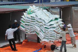 Xuất khẩu gạo đang thuận lợi
