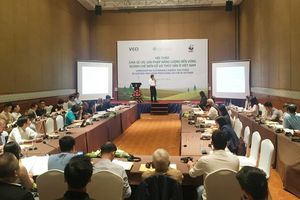Hội thảo tìm giải pháp sử dụng năng lượng bền vững trong chế biến gỗ và thủy sản