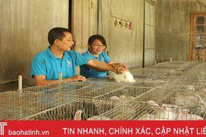Hương Sơn có hàng ngàn trang trại, gia trại thu nhập khá