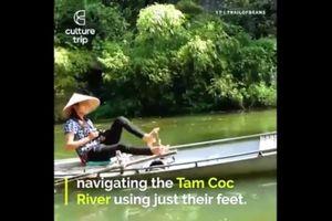 Chèo thuyền bằng chân ở Tam Cốc, Ninh Bình khiến du khách Tây thích thú