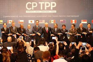 Canada West Foundation: Hiệp định CPTPP đã đến 'đúng thời điểm'