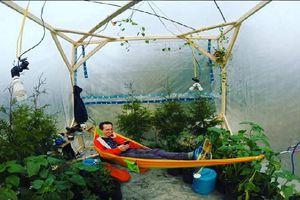 Chàng trai thử nghiệm sống trong ngôi lều kín 3m2 cùng 200 cây xanh và cái kết bất ngờ