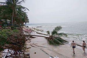 Hàng loạt resort ở Mũi Né bị sóng biển đánh sập