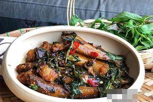 Cá bống đục kho rau răm đậm đà trôi cơm bất ngờ