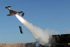 Ucraina thử nghiệm máy bay không người lái – cảm tử