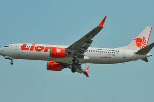 Máy bay Indonesia có thể đã lao xuống biển với tốc độ 1.000 km/h