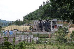 Thanh tra Chính phủ nói về vụ 'xẻ thịt' đất rừng ở Sóc Sơn