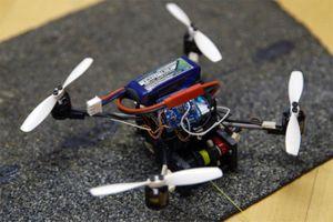 Drone 'siêu nhỏ' có thể tải vật nặng gấp… 40 lần trọng lượng của mình
