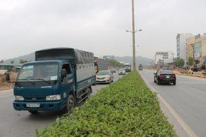 Quảng Ninh: Thêm đại lộ nối nội thị Hạ Long với cao tốc Hạ Long - Hải Phòng