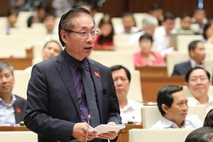 Đại biểu Quốc hội: Tiếp tục thí điểm cấp thị thực điện tử là cần thiết