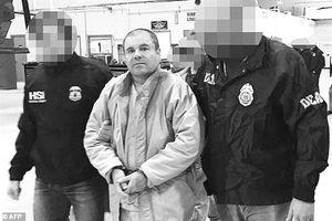 Trùm ma úy El Chapo hầu tòa