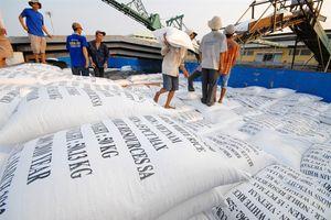 Ngành hàng lúa gạo đang đi đúng hướng