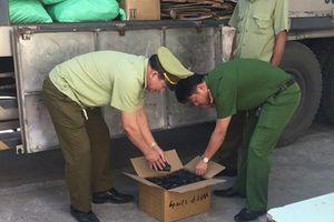 Nghệ An: 9 tấn pin không rõ nguồn gốc bị thu giữ