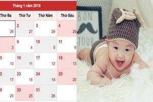 Bố mẹ 3 tuổi này sinh con năm Kỷ Hợi 2019 hưởng đại phúc, đại lộc, bé lớn lên thông minh, thành đạt