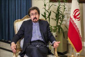 Người phát ngôn Bộ Ngoại giao Iran: 'Mỹ gây sức ép kinh tế với Iran là vô ích'