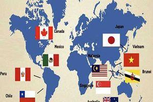 Hiệp định CPTPP giúp Việt Nam nâng cao nội lực, đa dạng hóa thị trường