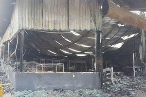 Hiện trường vụ cháy thiêu rụi quán gà Hoàng Gia ở Hải Dương
