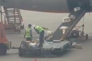 Jetstar sa thải hai nhân viên ném hành lý lên máy bay