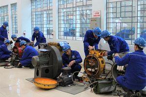Quảng Ninh: Hiệu quả đào tạo nghề gắn với giải quyết việc làm