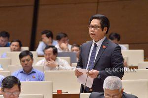 Tham gia CPTPP: Mang đến nhiều cơ hội hơn thách thức