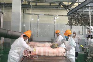 Thịt heo Việt Nam sẽ đến được bàn ăn của người Trung Quốc