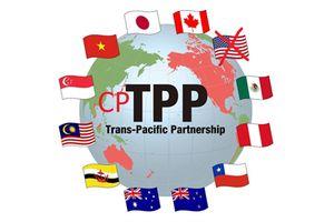 Cần chuẩn bị kỹ những thách thức, khó khăn khi phê chuẩn Hiệp định CPTPP