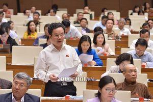 Hiệu phó ĐH Kinh tế Quốc dân: Tham gia CPTPP là cơ hội cho Việt Nam trong chiến tranh thương mại Mỹ - Trung