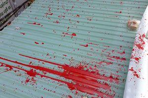 Vợ chồng già kêu cứu vì bị nhóm đòi nợ thuê tạt sơn, hành hung