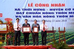 Thới Hưng đón nhận danh hiệu đạt chuẩn nông thôn mới