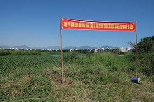 Việt Nam, Hoa Kỳ hợp tác xử lý ô nhiễm dioxin tại Đà Nẵng