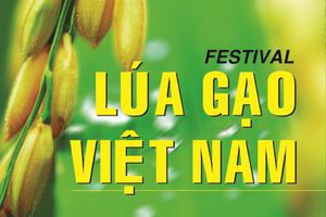 Festival lúa gạo: Kỳ vọng là cửa ngõ đưa gạo Việt ra thế giới
