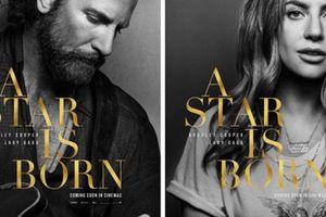 'A star is born' không đủ điều kiện tranh giải Grammy 2019