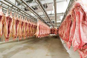 Thịt mát: Hướng ra mới của ngành chăn nuôi