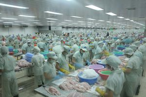 'Đại gia' thủy sản bị ngừng giao dịch trên sàn chứng khoán
