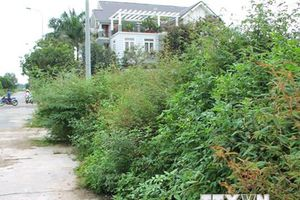 Hà Nội: Xử lý nghiêm những vi phạm quản lý đất đai ở Thanh Oai