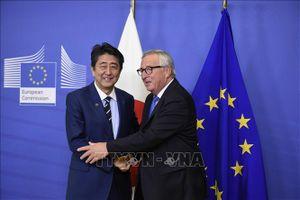 Nội các Nhật Bản thông qua dự luật phê chuẩn FTA với EU