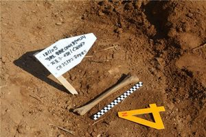 Hàn Quốc phát hiện thêm 2 bộ hài cốt binh sĩ tại 'tử địa' năm xưa