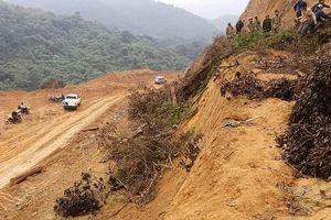 Điều tra vụ san ủi rừng trái phép ở Khe Cau