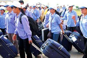 Lao động Việt làm việc ở Nhật, Hàn có thu nhập cao nhất