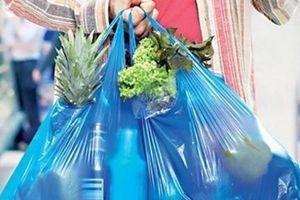 Phấn đấu giảm 65% lượng túi nilon tại các chợ, siêu thị