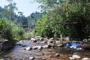 Chủ đầu tư Thủy điện Đăk Di 4 đòi kiện, tỉnh Quảng Nam sẵn sàng hầu tòa
