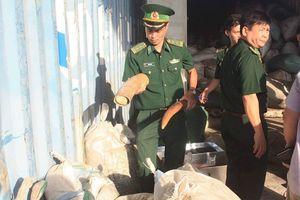 Đà Nẵng: Khen thưởng các đơn vị bắt giữ hơn 10 tấn ngà voi