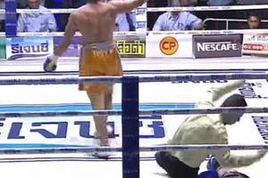 Huyền thoại võ Muay Thái tử vong vì bị knock-out